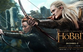 The Hobbit: The Desolation of Smaug HD