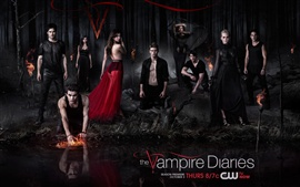 Preview wallpaper The Vampire Diaries 2013