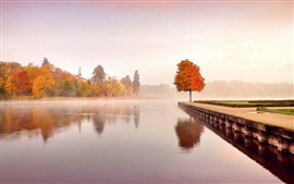 Autumn nature landscape, trees, orange, water, morning, mist