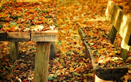 Preview wallpaper Autumn nature park, bench, table, fall leaves