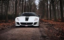 Ferrari 599 GTO blanco supercar, camino, árboles, otoño