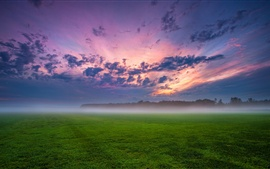 Germany, fields, trees, grass, mist, sunset, sky, clouds
