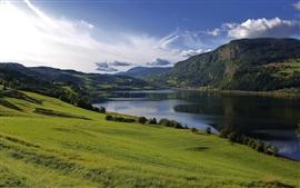 El agua del lago, campos, hierba, verde, colinas, montañas, verano, nubes