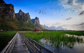 Parque nacional de Tailandia, el puente de madera, lago, hierba, choza, montañas, pájaros