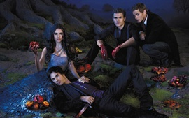 The Vampire Diaries 2013 Series TV