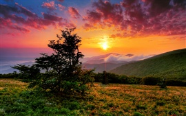 Preview wallpaper USA, North Carolina, morning, clouds, sunrise, mountains, hills, trees