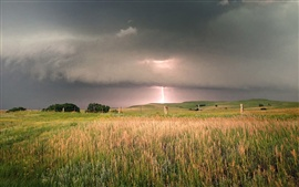 Fields, trees, black clouds, storm, lightning