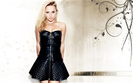 Preview wallpaper Hayden Panettiere 10