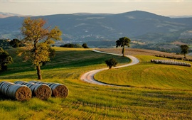 Preview wallpaper Hills, fields, trees, road, dusk