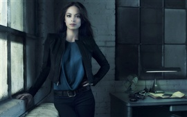 Preview wallpaper Kristin Kreuk 02