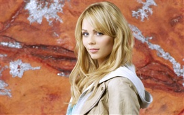 Preview wallpaper Laura Vandervoort 04