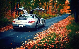 Preview wallpaper Mercedes-Benz SLS silver car in the autumn