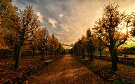 Park, path, bench, trees, autumn, dusk