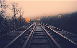 Railway, dawn, fog, trees, fall