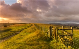 Preview wallpaper West Sussex, England, landscape, grass, fence, farm, sheep
