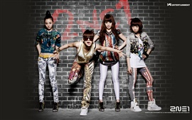 Preview wallpaper 2NE1 korea music girls 01