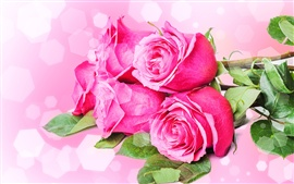 Preview wallpaper Bouquets flowers, pink roses