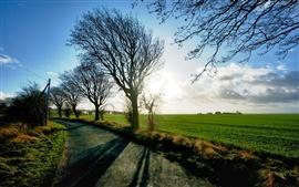 Paisaje de la granja, campos, árboles, Camino, Azul