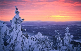 Preview wallpaper Finland, Lapland, winter snow, forest, sunset, sky