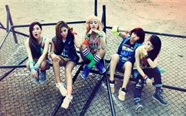 Cinco corea chicas de la música