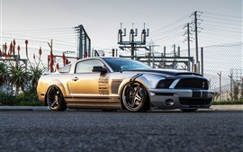 Ford Shelby Mustang GT500 supercar