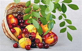 Fruits, peaches, cherries, basket, leaves