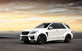 Preview wallpaper Mercedes-Benz ML63 AMG Inferno white SUV car