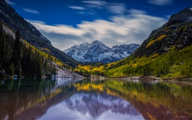 Mountain, forest, lake, reflection, quiet scenery