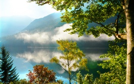 Preview wallpaper Nature scenery, mountains, forest, trees, lake, mist, morning, reflection