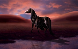 Preview wallpaper Rendering horse, wings, pegasus, water, clouds