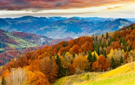 Sunset, autumn mountains, beautiful trees, field, skyline