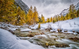 Val Bever, Engadin, Schweiz, winter, snow, trees, river, white