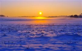 Invierno nieve, niebla, horizonte, cielo, amanecer, salida del sol