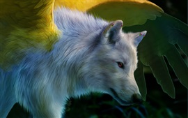 Art painting, white wolf, wings