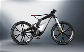Audi bicycle