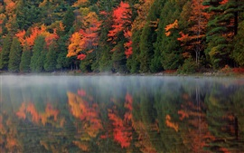 Preview wallpaper Autumn nature, forest, river, reflection, mist