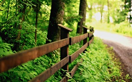 Preview wallpaper Green nature, road, wood fence