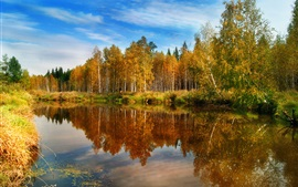Nature fall, forest, lake, water, reflections