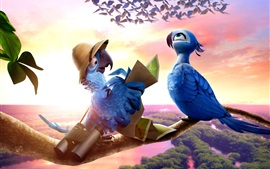 Preview wallpaper Rio 2