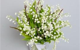 Spring, white little flowers