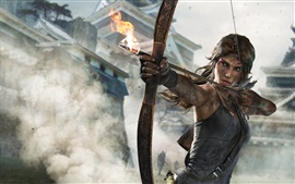 Tomb Raider: Definitive издание