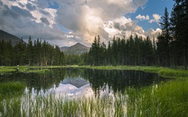 Preview wallpaper USA, California, mountains, forest, lake, reflection