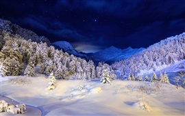 Preview wallpaper Winter night, mountains, stars, snow, forest, trees