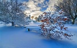 Espessa neve Inverno, árvores, pôr do sol, céu, nuvens