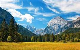 Preview wallpaper Alpes, mountains, blue sky, clouds, grass, forest, autumn