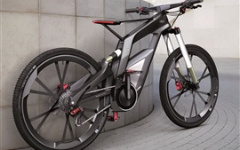 Black Audi bicycle