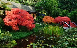 Preview wallpaper Japanese scenery, garden, pond