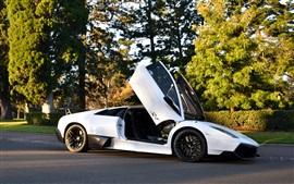 Lamborghini Murcielago LP670-4 white supercar, trees, road