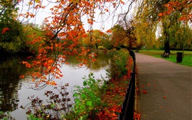 Preview wallpaper Leaves, park, trees, forest, autumn, walk, river