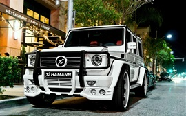 Mercedes-Benz G55 Hamann white car